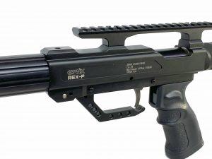 Rex-P-10